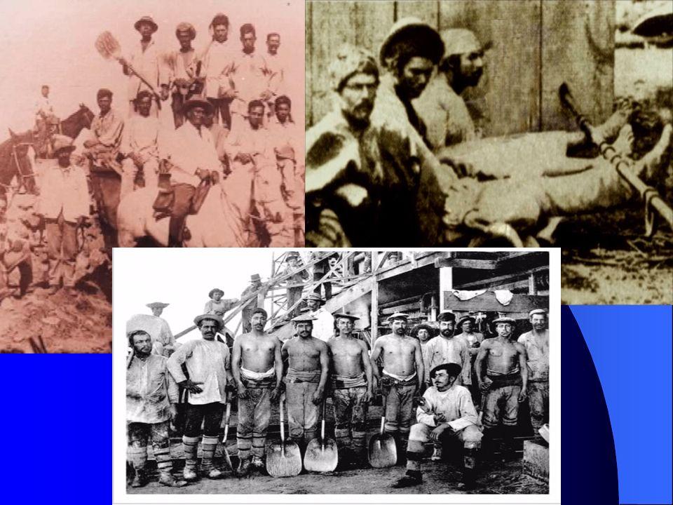 1.La formacion de Estado Nacion y el desorden familiar 1891 ÉpocaFamiliaProblematica Expacion de Recursos mineros, salitre, FFCC Guerras Norte y Araucania.