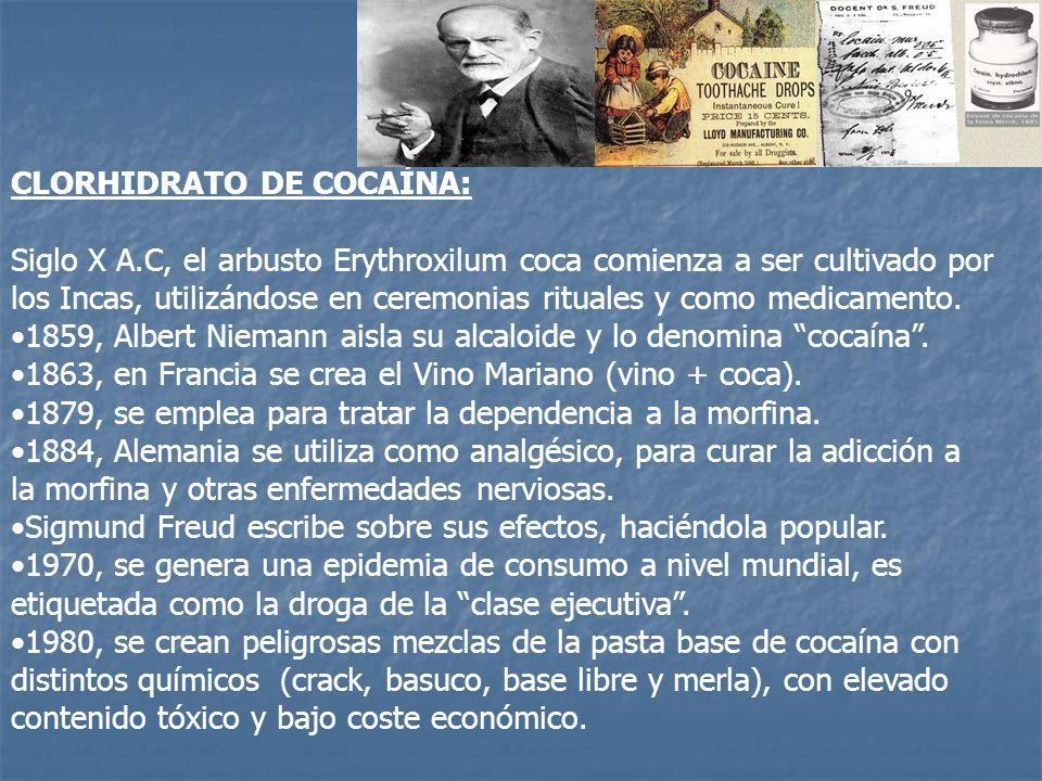 CLORHIDRATO DE COCAÍNA: Siglo X A.C, el arbusto Erythroxilum coca comienza a ser cultivado por los Incas, utilizándose en ceremonias rituales y como m