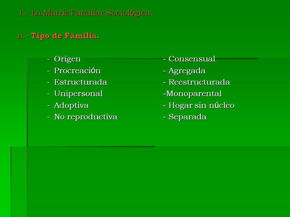 1.- La Matr í z Familiar Sociol ó gica. a.- Tipo de Familia. -Origen- Consensual -Procreaci ó n- Agregada -Estructurada- Reestructurada -Unipersonal-M