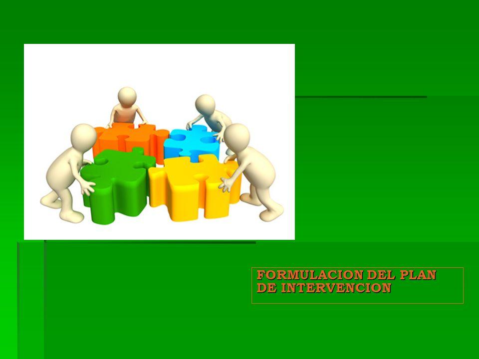 FORMULACION DEL PLAN DE INTERVENCION