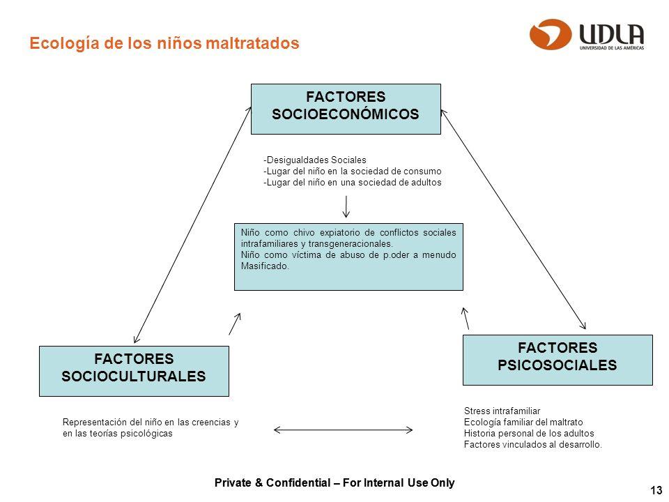Private & Confidential – For Internal Use Only 13 Ecología de los niños maltratados FACTORES SOCIOECONÓMICOS FACTORES PSICOSOCIALES FACTORES SOCIOCULT