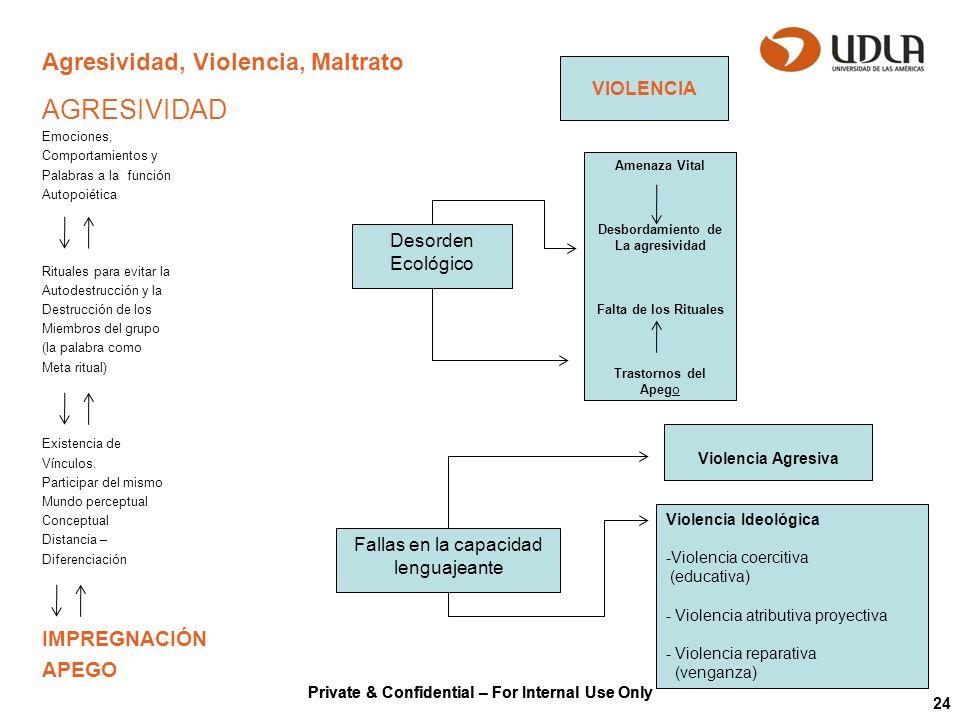Private & Confidential – For Internal Use Only 24 Agresividad, Violencia, Maltrato AGRESIVIDAD Emociones, Comportamientos y Palabras a la función Auto