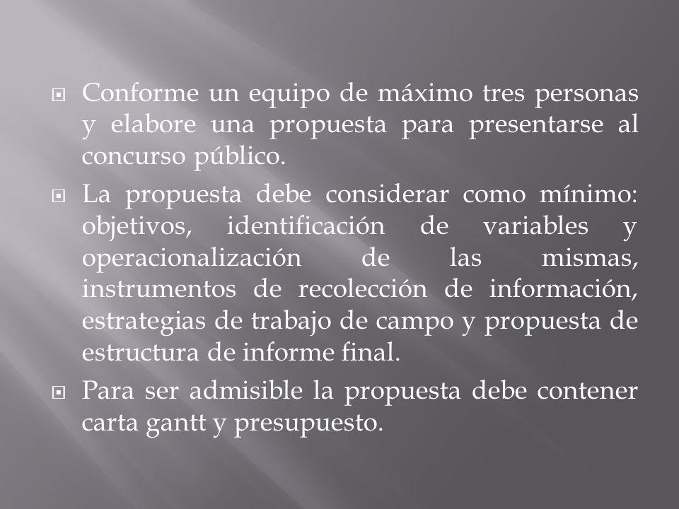 Su equipo consultor debe presentar la propuesta a más tardar el día martes 17 de mayo a las 13.00 hrs.