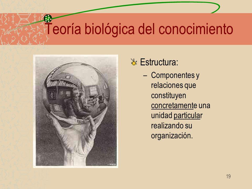 19 Teoría biológica del conocimiento Estructura: –Componentes y relaciones que constituyen concretamente una unidad particular realizando su organizac