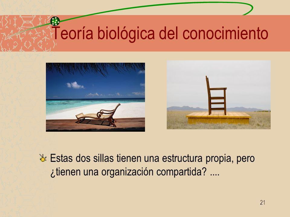 21 Teoría biológica del conocimiento Estas dos sillas tienen una estructura propia, pero ¿tienen una organización compartida?....