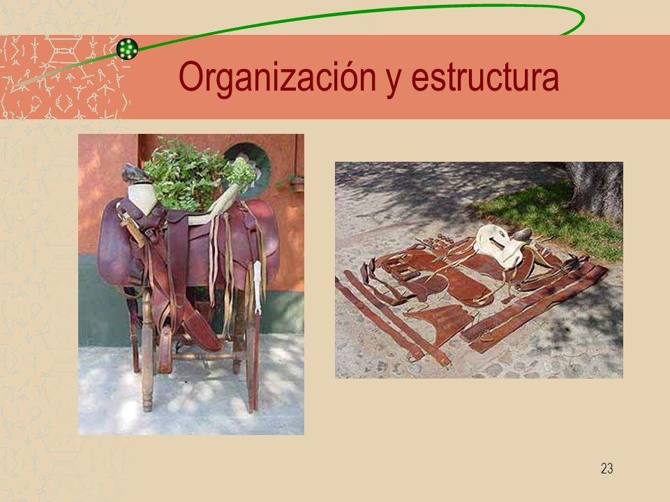 23 Organización y estructura