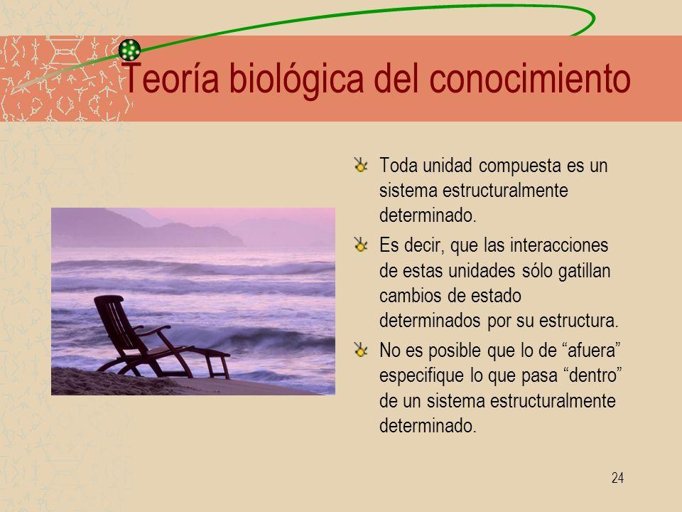 24 Teoría biológica del conocimiento Toda unidad compuesta es un sistema estructuralmente determinado. Es decir, que las interacciones de estas unidad