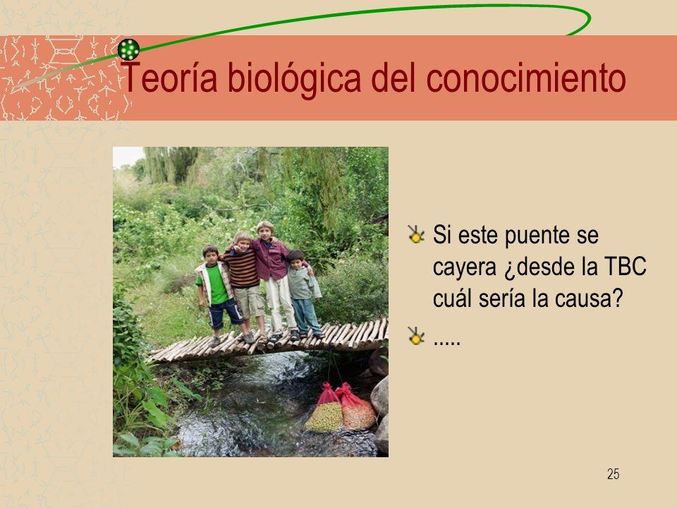 25 Teoría biológica del conocimiento Si este puente se cayera ¿desde la TBC cuál sería la causa?.....
