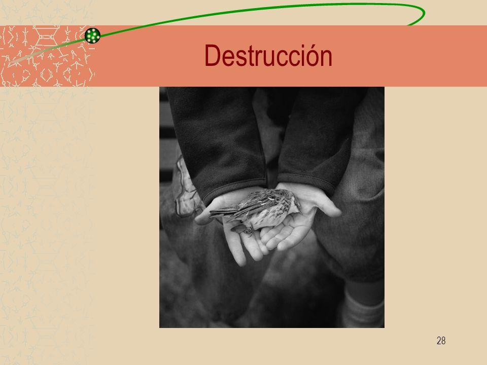 28 Destrucción