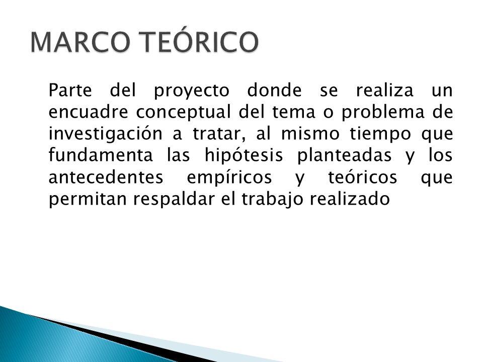 Parte del proyecto donde se realiza un encuadre conceptual del tema o problema de investigación a tratar, al mismo tiempo que fundamenta las hipótesis
