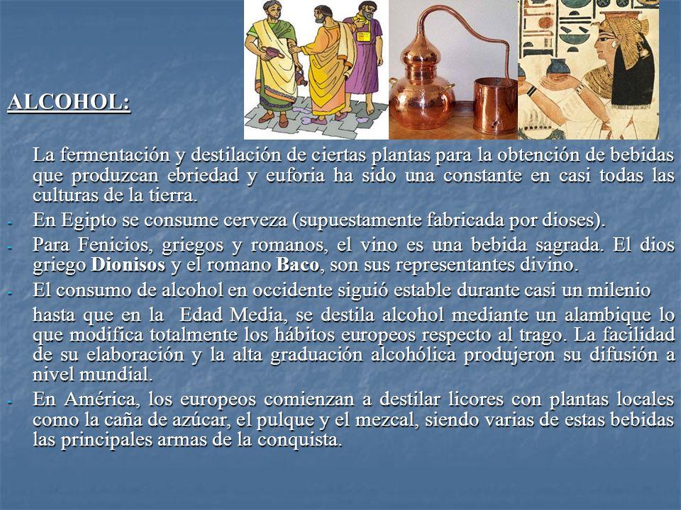 ALCOHOL: La fermentación y destilación de ciertas plantas para la obtención de bebidas que produzcan ebriedad y euforia ha sido una constante en casi