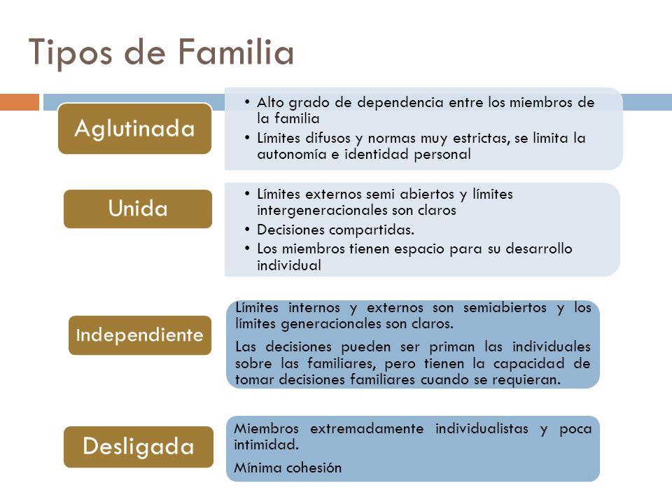 Tipos de Familia Alto grado de dependencia entre los miembros de la familia Límites difusos y normas muy estrictas, se limita la autonomía e identidad