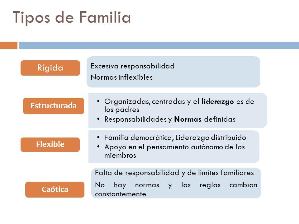 Tipos de Familia Organizadas, centradas y el liderazgo es de los padres Responsabilidades y Normas definidas Estructurada Familia democrática, Lideraz