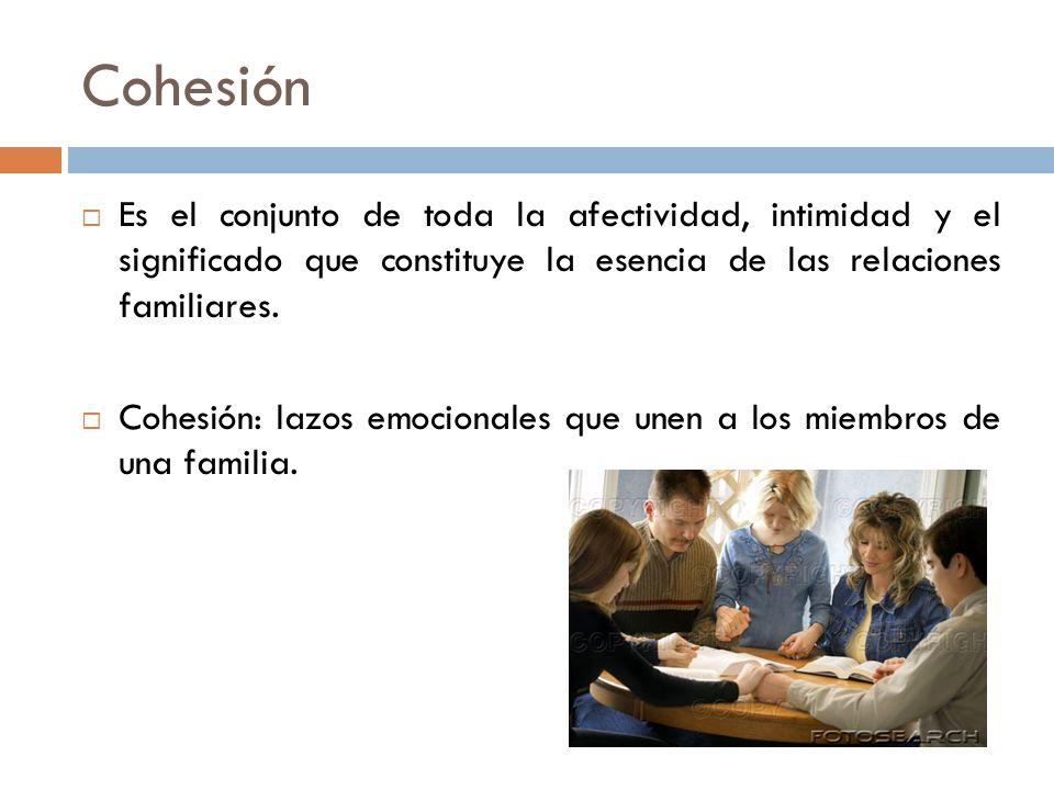 Cohesión Es el conjunto de toda la afectividad, intimidad y el significado que constituye la esencia de las relaciones familiares. Cohesión: lazos emo