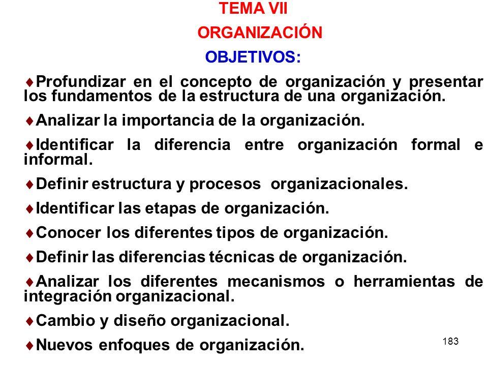 183 TEMA VII ORGANIZACIÓN OBJETIVOS: Profundizar en el concepto de organización y presentar los fundamentos de la estructura de una organización. Anal