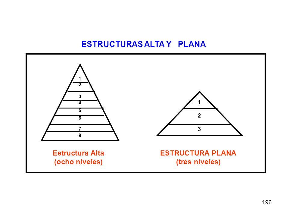 196 1234567812345678 Estructura Alta (ocho niveles) 123123 ESTRUCTURA PLANA (tres niveles) ESTRUCTURAS ALTA Y PLANA
