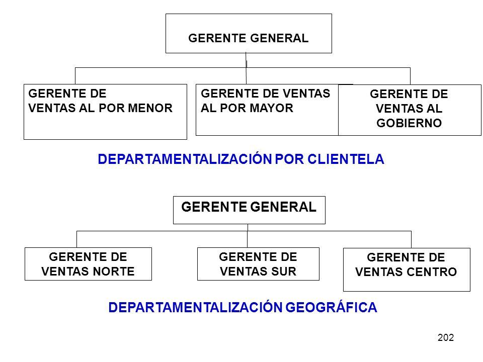 202 GERENTE GENERAL GERENTE DE VENTAS AL POR MENOR GERENTE DE VENTAS AL POR MAYOR GERENTE DE VENTAS AL GOBIERNO DEPARTAMENTALIZACIÓN POR CLIENTELA GER