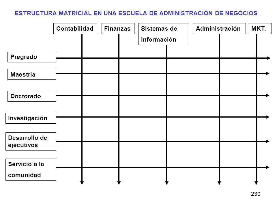 230 ContabilidadFinanzasSistemas de información AdministraciónMKT. Servicio a la comunidad Desarrollo de ejecutivos Investigación Doctorado Maestrìa P