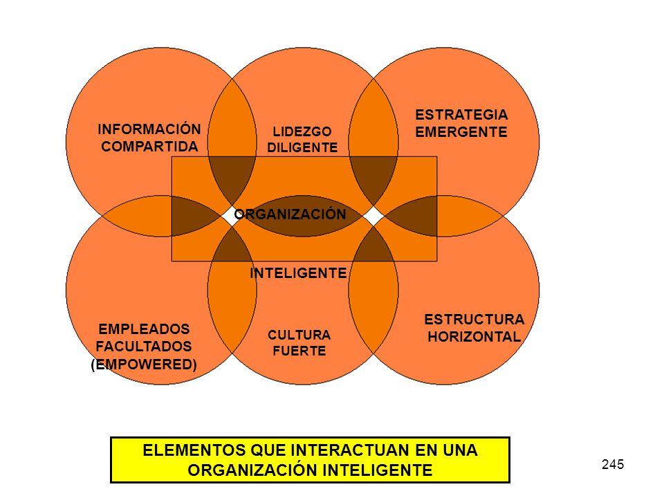245 INFORMACIÓN COMPARTIDA LIDEZGO DILIGENTE ESTRATEGIA EMERGENTE EMPLEADOS FACULTADOS (EMPOWERED) CULTURA FUERTE ESTRUCTURA HORIZONTAL ORGANIZACIÓN I