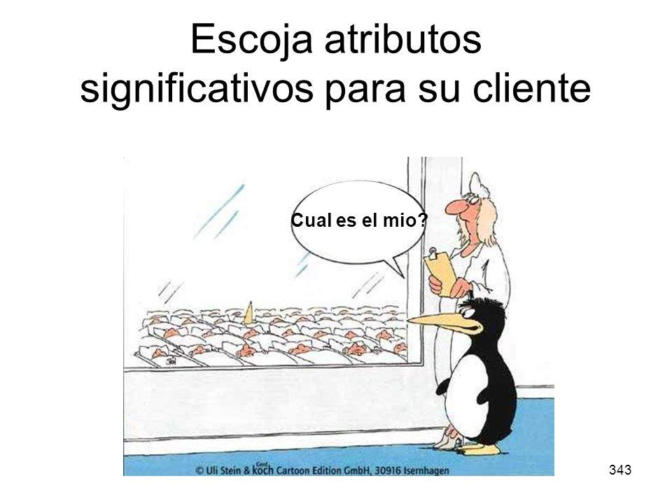 343 Escoja atributos significativos para su cliente Cual es el mio?