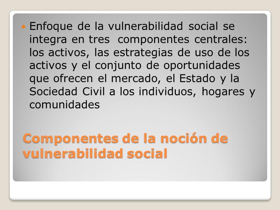 Componentes de la noción de vulnerabilidad social Enfoque de la vulnerabilidad social se integra en tres componentes centrales: los activos, las estra