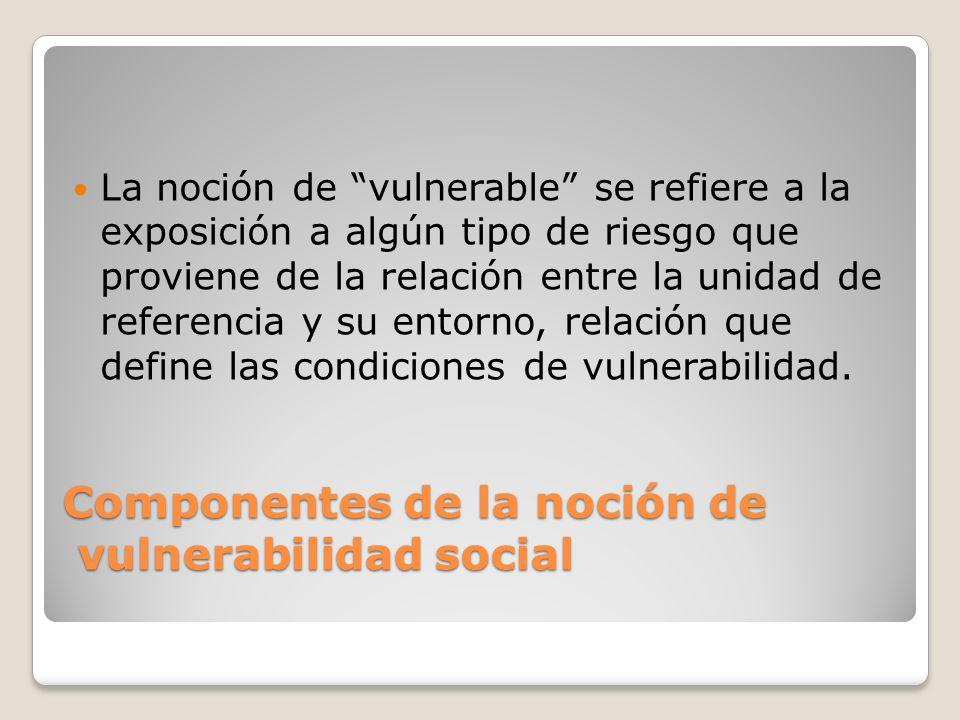 Componentes de la noción de vulnerabilidad social La noción de vulnerable se refiere a la exposición a algún tipo de riesgo que proviene de la relació