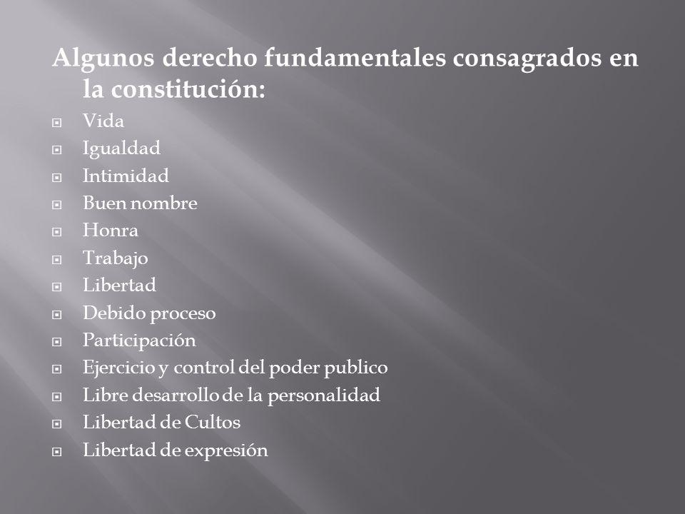 Algunos derecho fundamentales consagrados en la constitución: Vida Igualdad Intimidad Buen nombre Honra Trabajo Libertad Debido proceso Participación