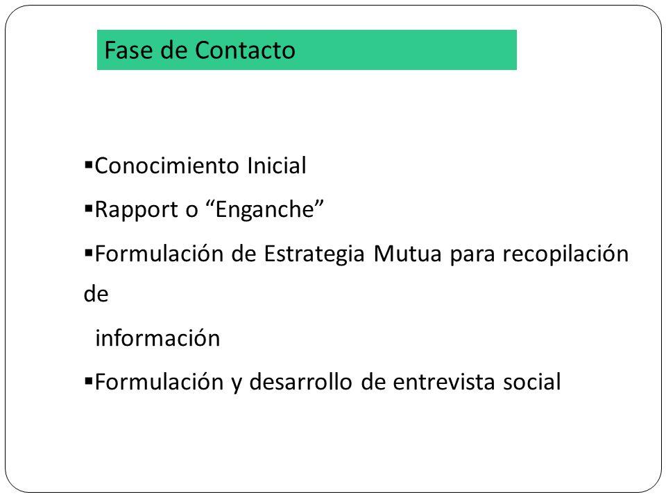 Conocimiento Inicial Rapport o Enganche Formulación de Estrategia Mutua para recopilación de información Formulación y desarrollo de entrevista social