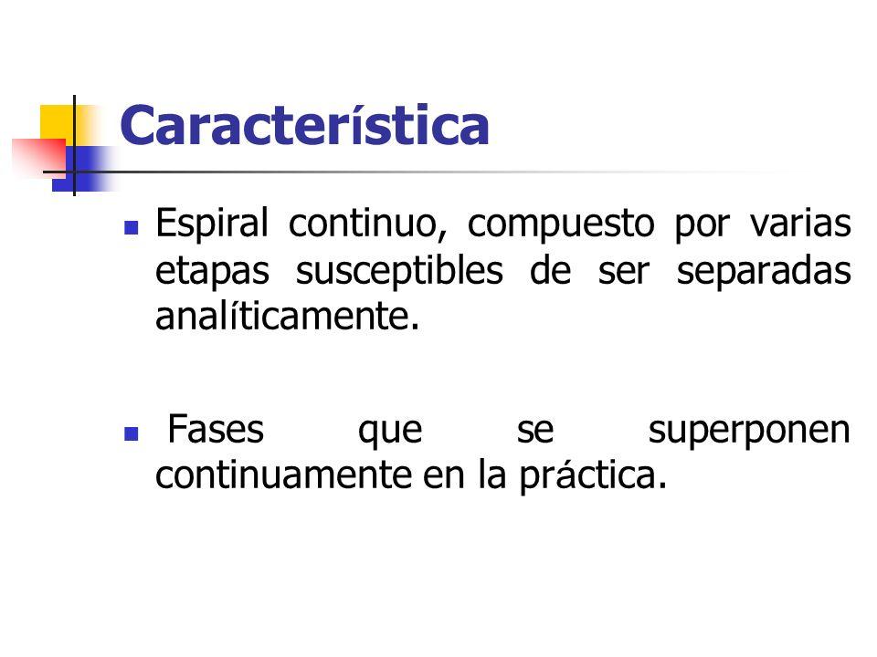 Proceso El proceso consta de cuatro actividades b á sicas.