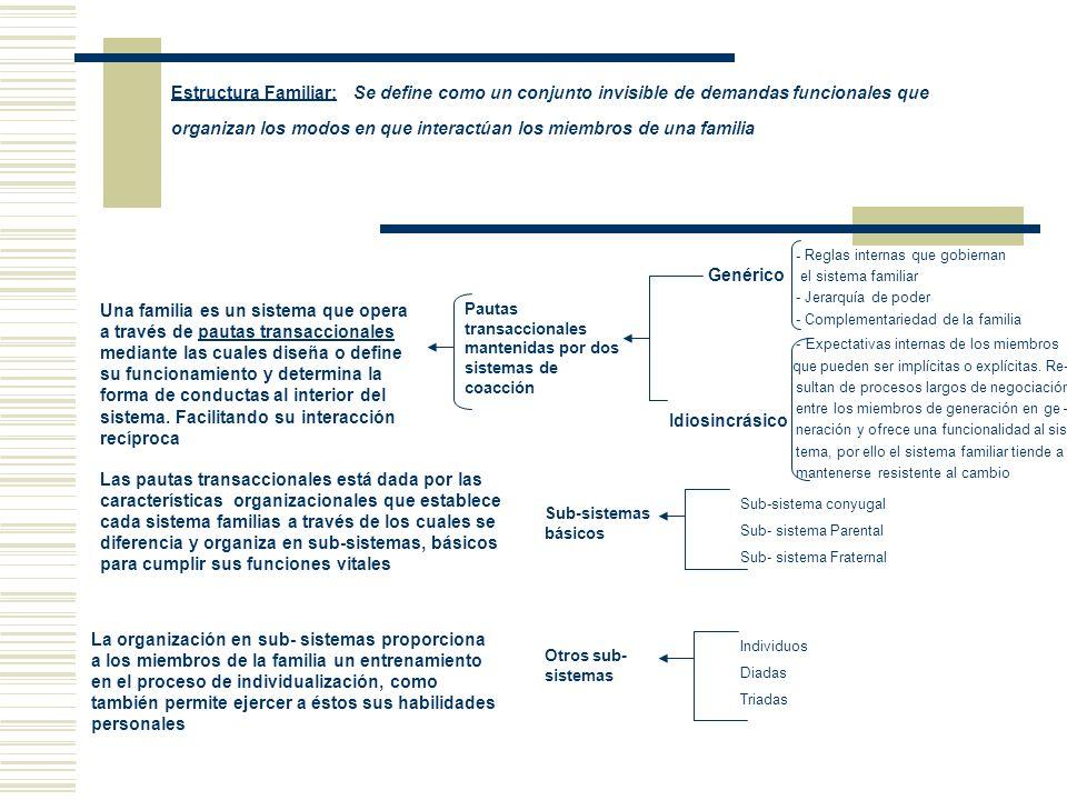 Estructura Familiar: Se define como un conjunto invisible de demandas funcionales que organizan los modos en que interactúan los miembros de una famil