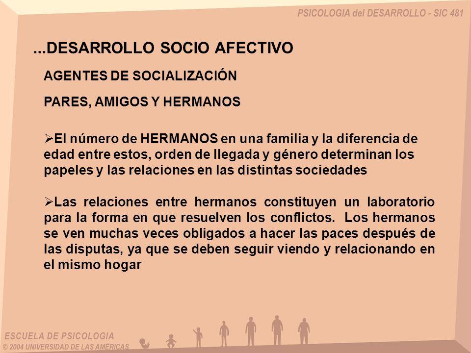 ...DESARROLLO SOCIO AFECTIVO El número de HERMANOS en una familia y la diferencia de edad entre estos, orden de llegada y género determinan los papele