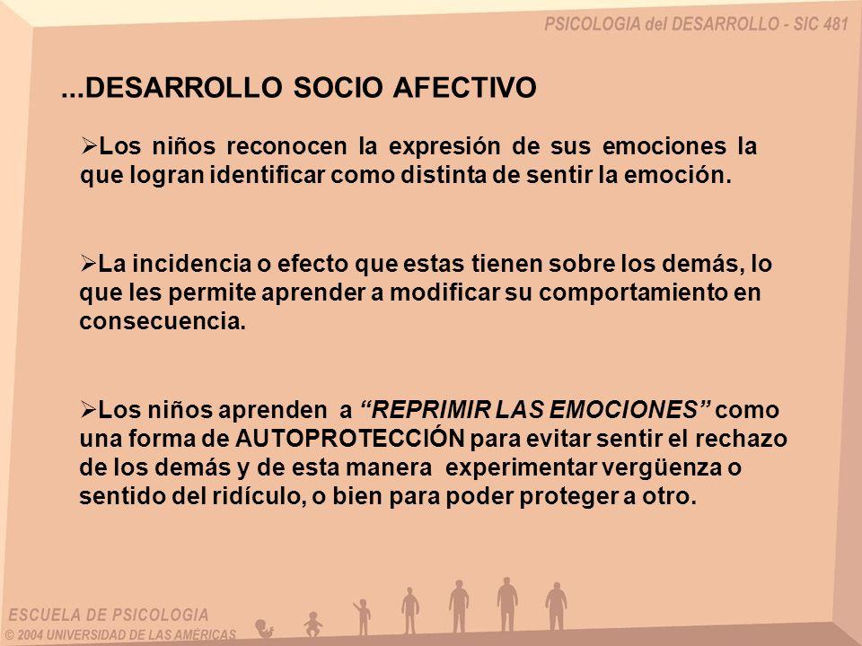 ...DESARROLLO SOCIO AFECTIVO Comienzan a desarrollar la CAPACIDAD DE EMPATÍA.