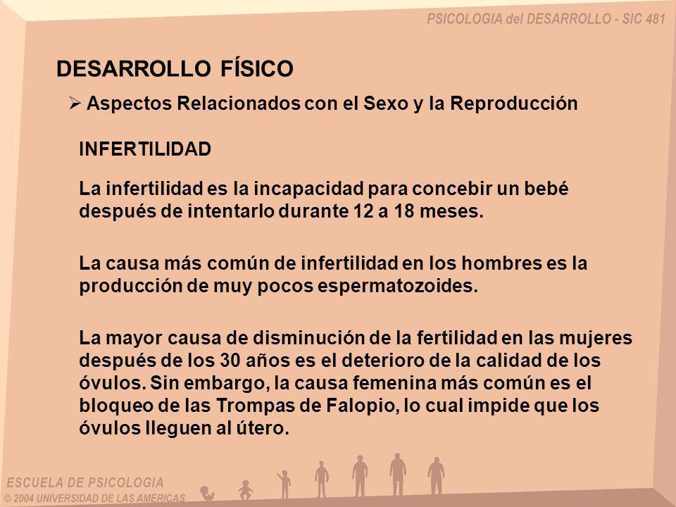 DESARROLLO FÍSICO La infertilidad es la incapacidad para concebir un bebé después de intentarlo durante 12 a 18 meses. INFERTILIDAD La causa más común