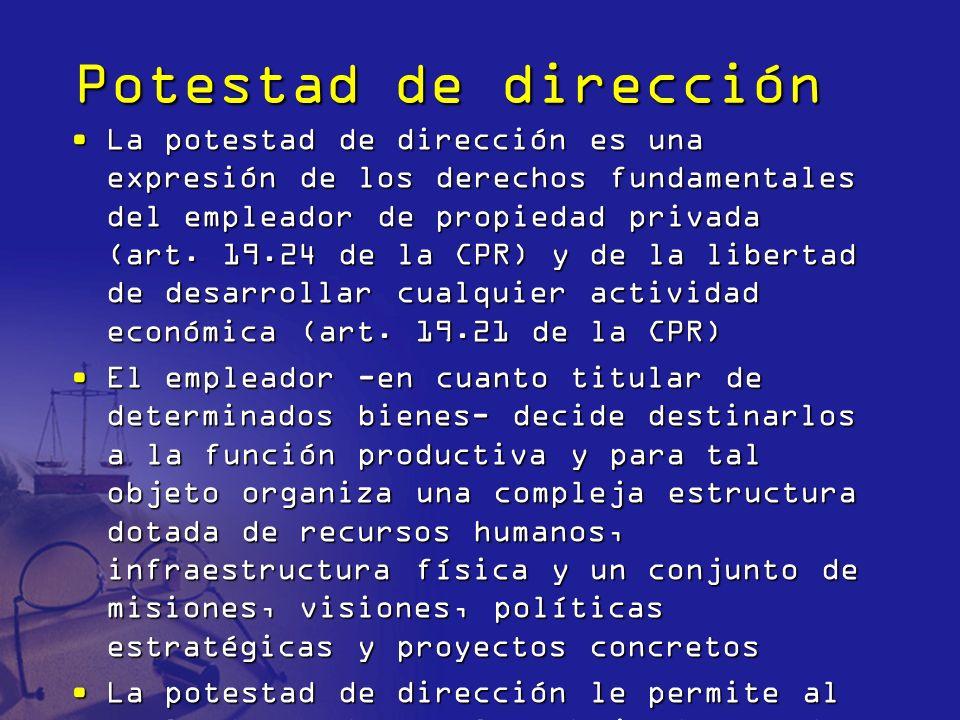 Potestad de dirección La potestad de dirección es una expresión de los derechos fundamentales del empleador de propiedad privada (art. 19.24 de la CPR