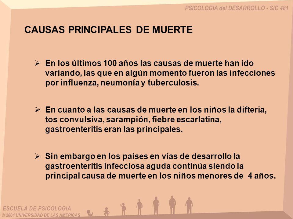 CAUSAS PRINCIPALES DE MUERTE En los últimos 100 años las causas de muerte han ido variando, las que en algún momento fueron las infecciones por influe