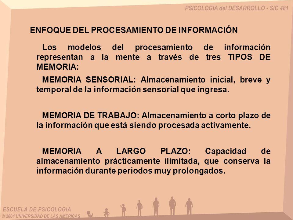 Los modelos del procesamiento de información representan a la mente a través de tres TIPOS DE MEMORIA: ENFOQUE DEL PROCESAMIENTO DE INFORMACIÓN MEMORI