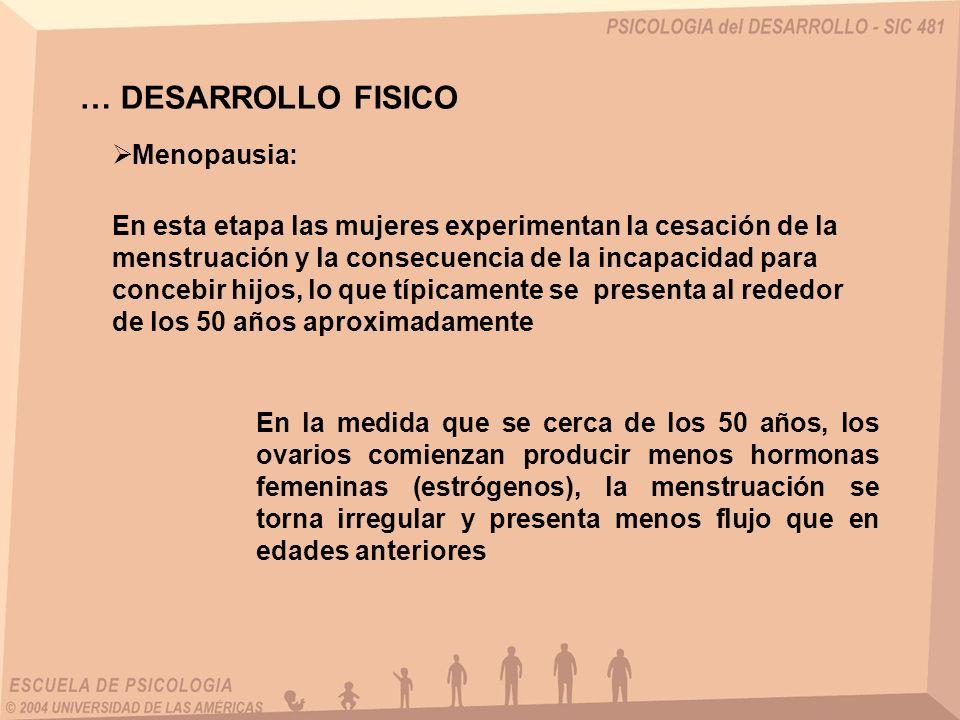 … DESARROLLO FISICO Menopausia: En esta etapa las mujeres experimentan la cesación de la menstruación y la consecuencia de la incapacidad para concebir hijos, lo que típicamente se presenta al rededor de los 50 años aproximadamente En la medida que se cerca de los 50 años, los ovarios comienzan producir menos hormonas femeninas (estrógenos), la menstruación se torna irregular y presenta menos flujo que en edades anteriores