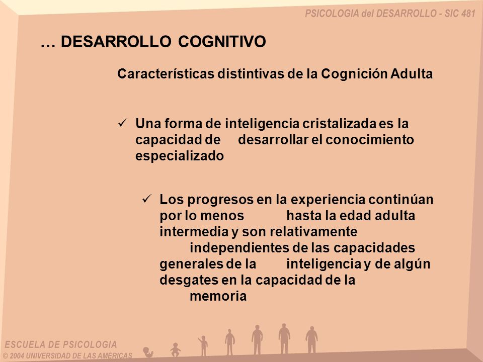 … DESARROLLO COGNITIVO Características distintivas de la Cognición Adulta Una forma de inteligencia cristalizada es la capacidad de desarrollar el conocimiento especializado Los progresos en la experiencia continúan por lo menos hasta la edad adulta intermedia y son relativamente independientes de las capacidades generales de la inteligencia y de algún desgates en la capacidad de la memoria