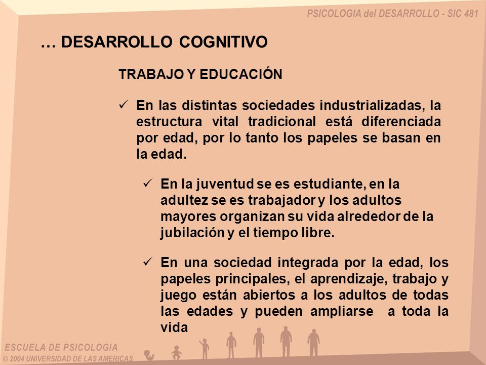… DESARROLLO COGNITIVO TRABAJO Y EDUCACIÓN En las distintas sociedades industrializadas, la estructura vital tradicional está diferenciada por edad, por lo tanto los papeles se basan en la edad.