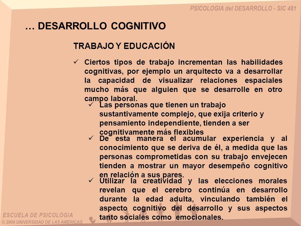 … DESARROLLO COGNITIVO TRABAJO Y EDUCACIÓN Ciertos tipos de trabajo incrementan las habilidades cognitivas, por ejemplo un arquitecto va a desarrollar