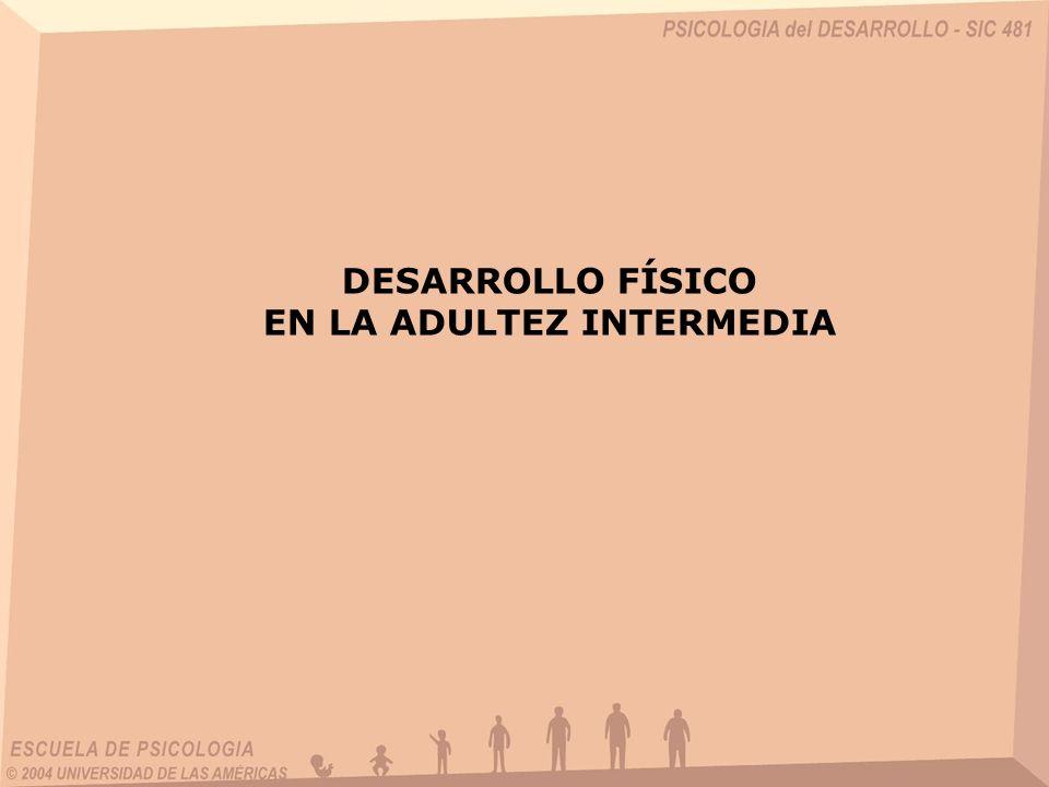 DESARROLLO FÍSICO EN LA ADULTEZ INTERMEDIA