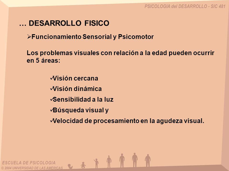 … DESARROLLO FISICO Funcionamiento Sensorial y Psicomotor Los problemas visuales con relación a la edad pueden ocurrir en 5 áreas: Visión cercana Visión dinámica Sensibilidad a la luz Búsqueda visual y Velocidad de procesamiento en la agudeza visual.