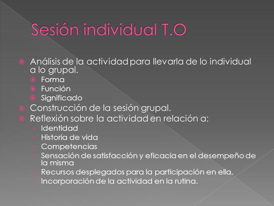 Análisis de la actividad para llevarla de lo individual a lo grupal. Forma Función Significado Construcción de la sesión grupal. Reflexión sobre la ac