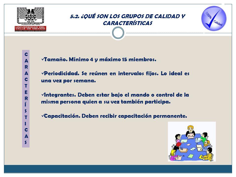 5.2.¿QUÉ SON LOS GRUPOS DE CALIDAD Y CARACTERÍSTICAS Tamaño.