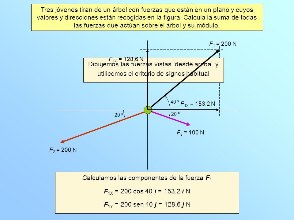 Calculamos las componentes de la fuerza F 1 F 1X = 200 cos 40 i = 153,2 i N F 1Y = 200 sen 40 j = 128,6 j N Dibujemos las fuerzas vistas desde arriba y utilicemos el criterio de signos habitual 40 º 20 º F 1 = 200 N F 2 = 200 N F 3 = 100 N F 1X = 153,2 N F 1Y = 128,6 N