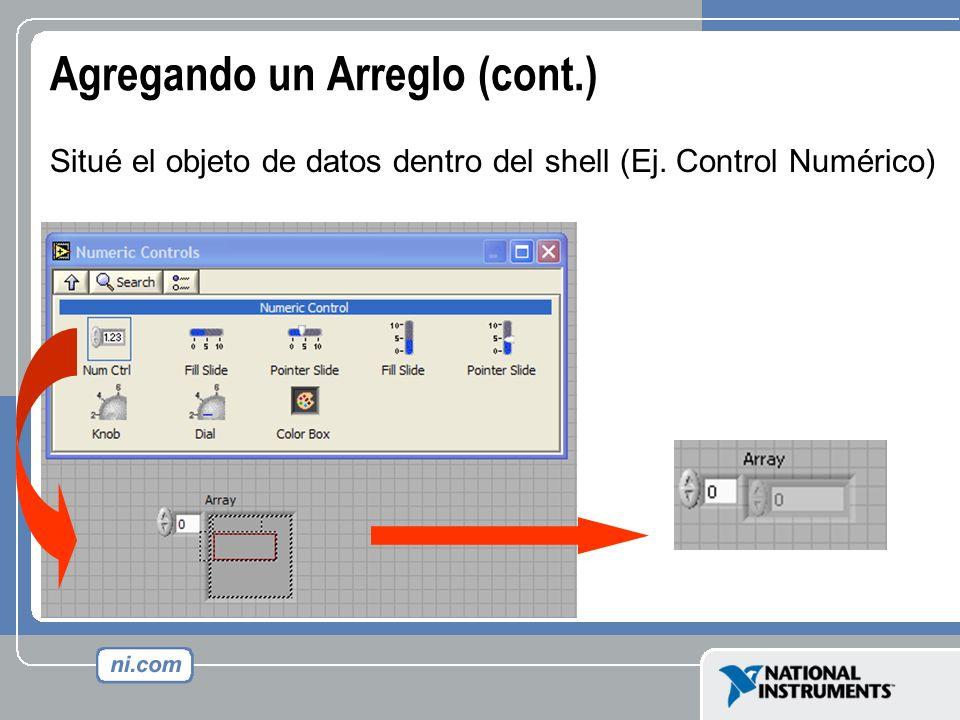 Agregando un Arreglo (cont.) Situé el objeto de datos dentro del shell (Ej. Control Numérico)