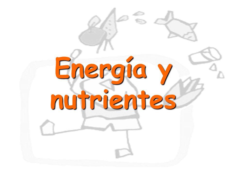 13 Energía y nutrientes