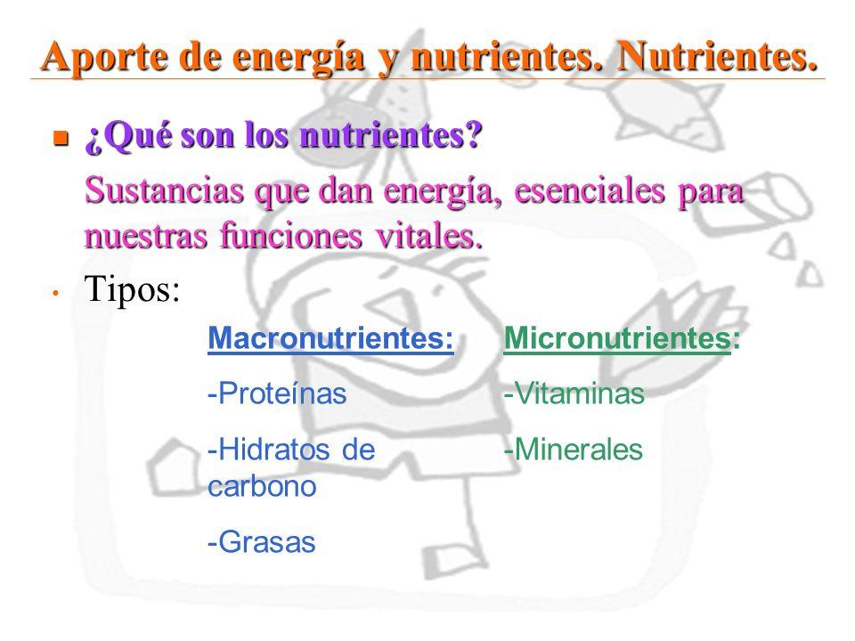 16 Aporte de energía y nutrientes. Nutrientes. ¿Qué son los nutrientes? ¿Qué son los nutrientes? Sustancias que dan energía, esenciales para nuestras