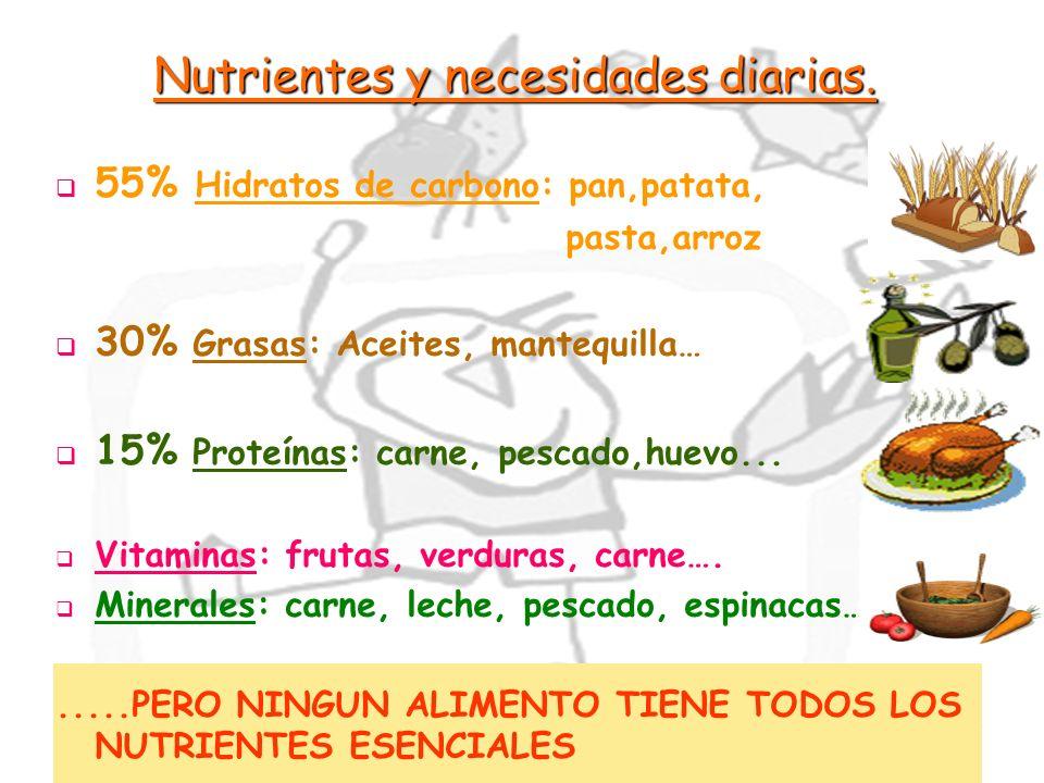 17 Nutrientes y necesidades diarias. 55% Hidratos de carbono: pan,patata, pasta,arroz 30% Grasas: Aceites, mantequilla… 15% Proteínas: carne, pescado,
