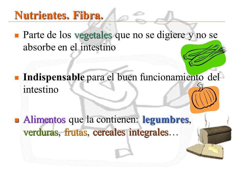 18 Nutrientes. Fibra. Parte de los vegetales que no se digiere y no se absorbe en el intestino Parte de los vegetales que no se digiere y no se absorb